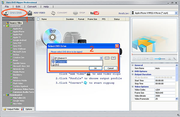 Ripping CSI to videos step 1, load DVD