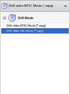 Select output to burn mpeg4 to DVD