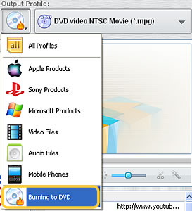 Select option to burn video to dvd