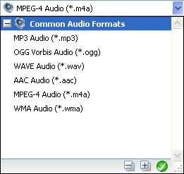 Audio output format of video to audio